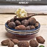 Les répercussions de la biologie synthétique en Afrique